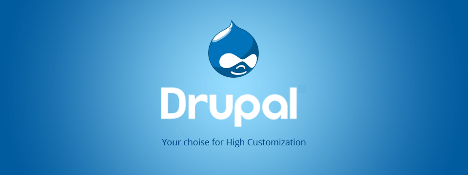 drupal-development-company
