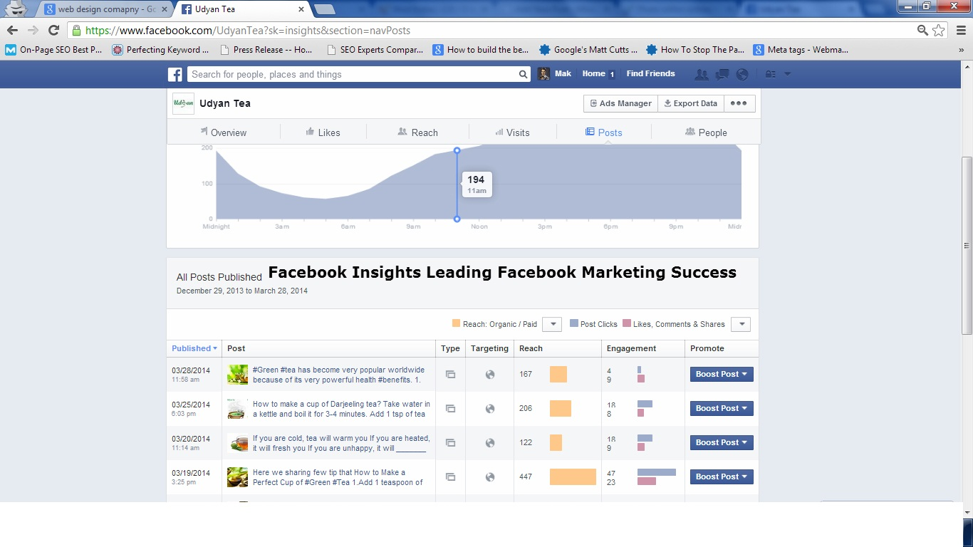 Facebook Insights Leading to Facebook Marketing Success