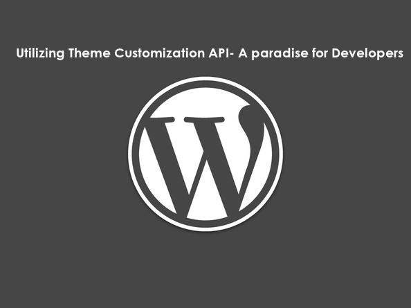 Utilizing Theme Customization API- A Paradise for Developers